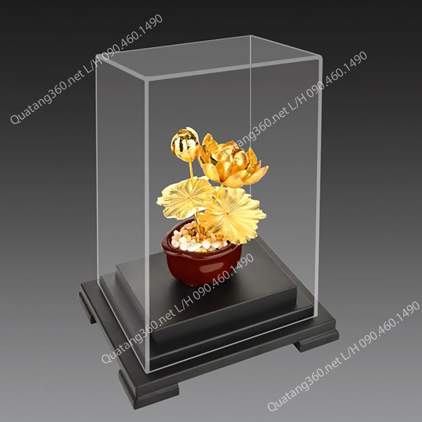 hoa sen mạ vàng