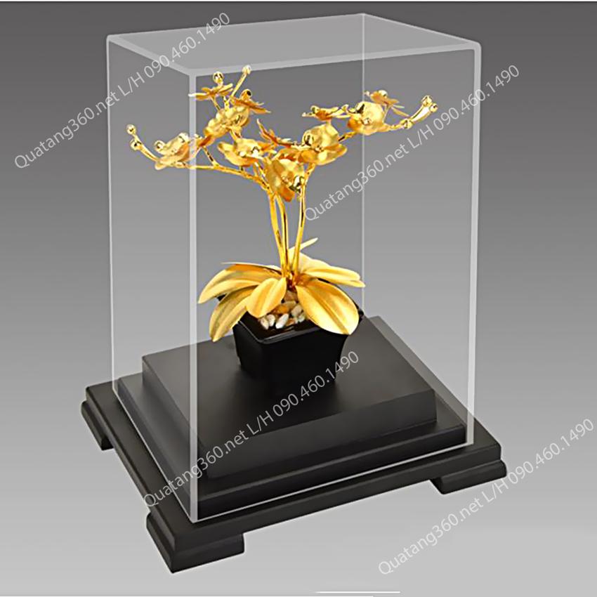 Quà tặng lãnh đạo - hoa lan dát vàng