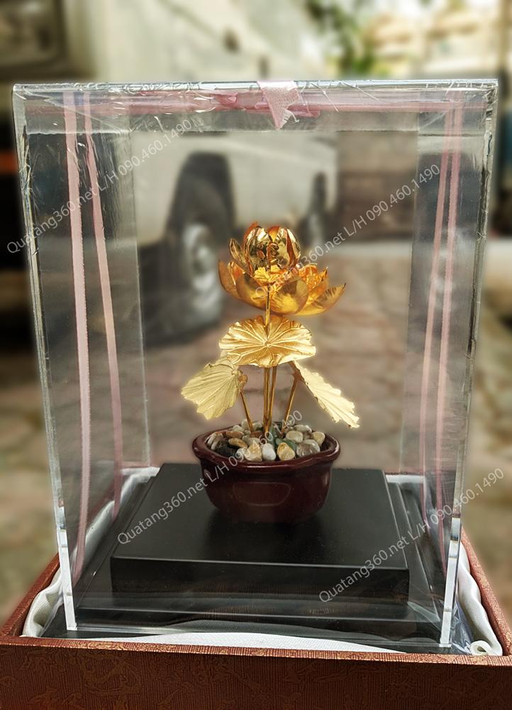 hoa sen dát vàng tặng thủ trưởng